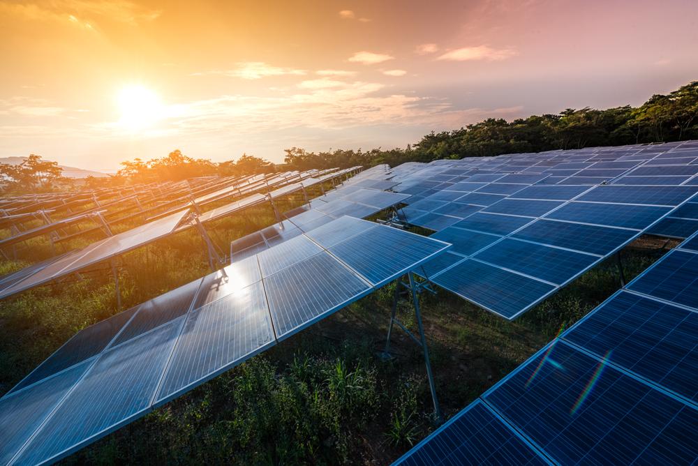 Solarbeschäftigung sinkt im zweiten Jahr unter Trumpf – @shutterstock | Love Silhouette
