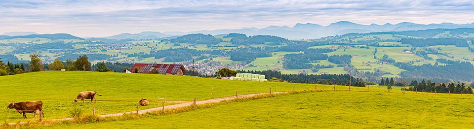 Landsolar in Deutschland – @shutterstock   Konstantin Yolshin