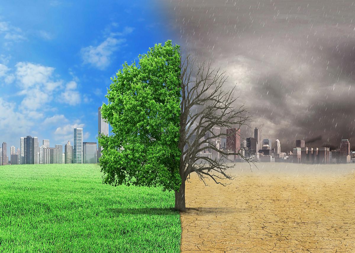 Klimaschutz: Theorie und Praxis - Bild: @shutterstock|studiovin