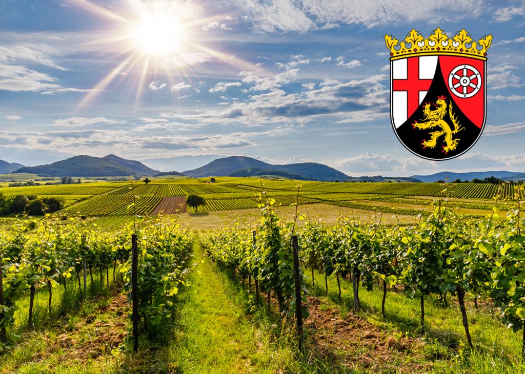 Solarpflicht bzw. Solarcarportpflicht in Rheinland-Pfalz