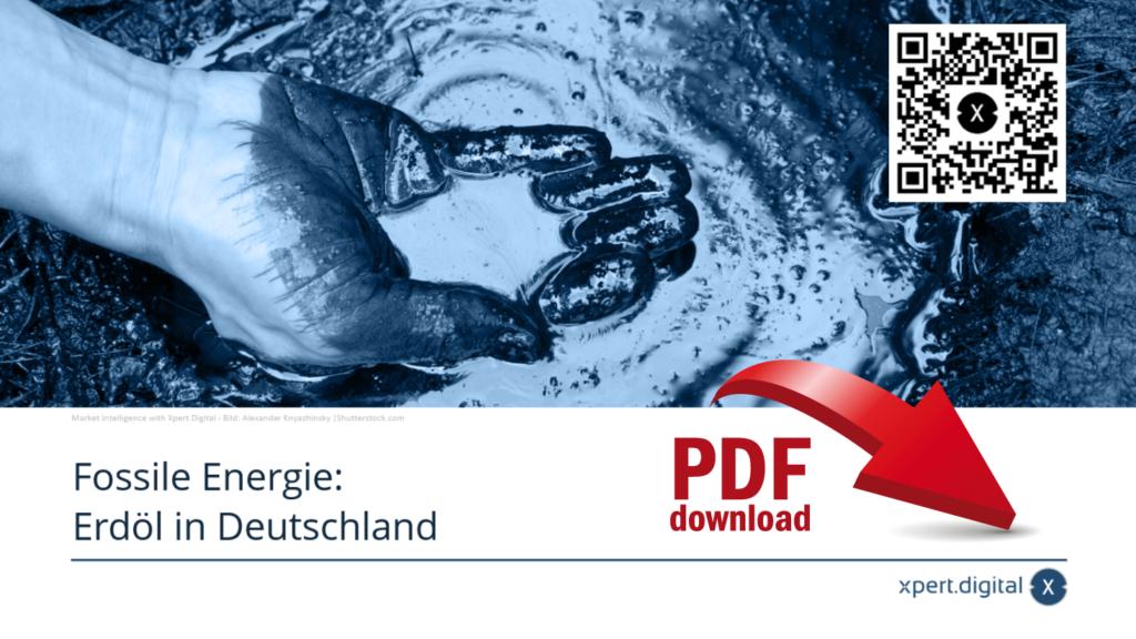 Fossile Energie: Erdöl in Deutschland - PDF Download